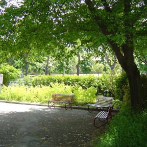 Giardino Don Baronio Cesena
